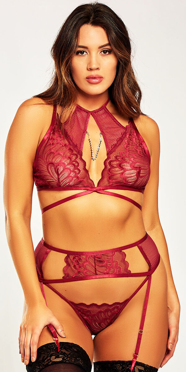 plus size burgundy mesh lace strappy bra set sexy curvy women's intimates